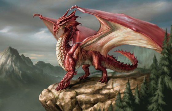 Image Dragon