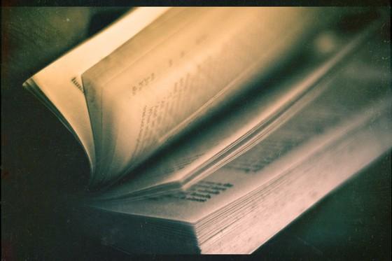 Payer les auteurs à la page